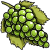 Green Grapes.png